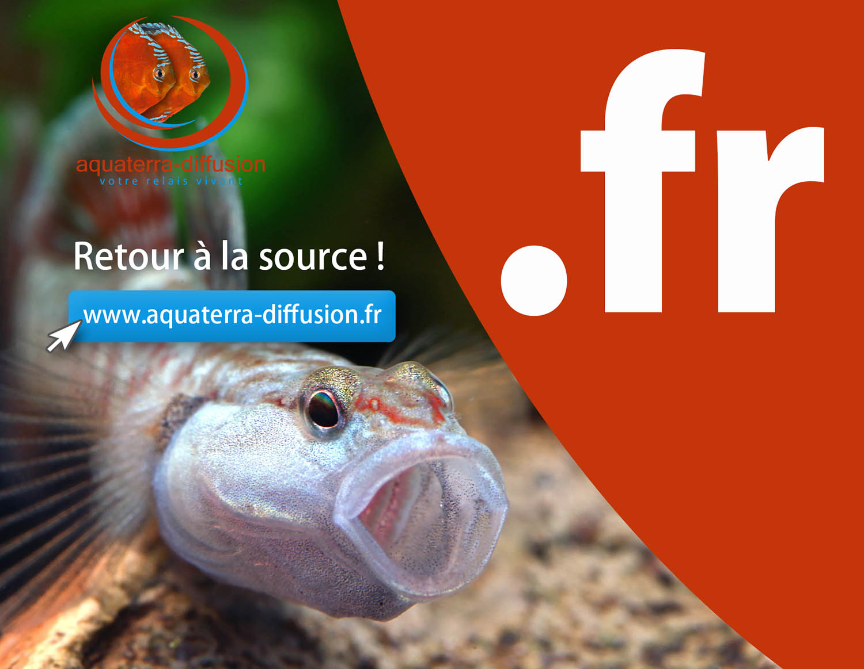 Aquaterra Diffusion retour au nom de domaine .fr